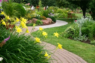 Gardening in Mid June